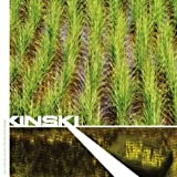 Don't Climb on & Take the Holy Water by Kinski (2004-05-04)