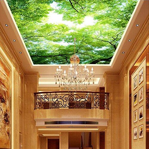 feis-moderno-salon-dormitorio-techo-color-azul-cielo-techo-de-madera-fondos-de-pantalla-mural-verde-