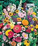 WalterDrake Instant Roll Out Flower Garden