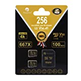 2-Pack 256GB Micro SD Card Plus Adapter - Amplim 256 GB MicroSD SDXC V30 A1 U3 Class 10 Ultra High Speed 100MB/s UHS-I TF XC MicroSDXC Memory Card for Cell Phone, Nintendo, Galaxy, Fire, Gopro Camera (Color: Black 2X 256GB, Tamaño: MicroSD)