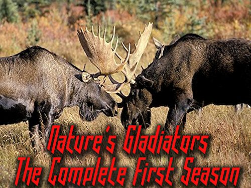 Nature's Gladiators - The Complete First Season