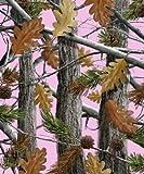 Queen Size The Huntsman Collection Luxury Plush Raschel Blanket--Camo Trees-Pink