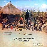Gwindingwi Rine Shumba