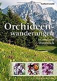 Orchideenwanderungen in Österreich