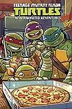 img - for Teenage Mutant Ninja Turtles: New Animated Adventures Omnibus Volume 2 book / textbook / text book