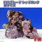 (海水)ライブロック EXSグレード レッドロック Mサイズ(1個)(形状お任せ) 本州・四国限定[生体]