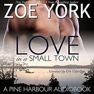 Love in a Small Town Audiobook