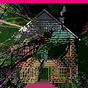 Vol. 5-Board Up the House Remixes [Vinyl]