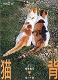 猫背—振り向かニャいで