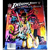 Indiana Jones and the Temple of Doom (Marvel Super Special #30) ~ David Michelinie