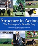 img - for Structure in Action: The Makings of a Durable Dog book / textbook / text book