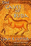 The Caves of Buda