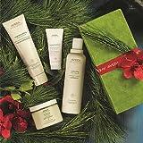 AVEDA Gift Set - a gift of renewal - bath and body care - Holiday 2014