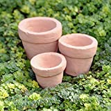 Miniature Fairy Garden Tiny Pots, Set of 3
