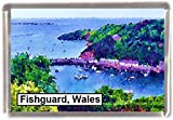 Fishguard wales Gift Souvenir Fridge Magnet