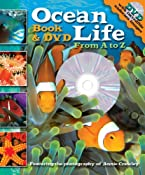 Ocean Life From A to Z Book and DVD: Cynthia Stierle, Annie Crawley: 9780794412227: Amazon.com: Books