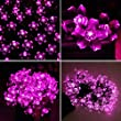 Deckey Solar Fairy String Light 100 LED Garden Decorative Blossom Flower 55ft for Indoor Outdoor Party Wedding Patio (Pink)
