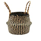 Belly Basket, Seagrass Planter for Fig Home Organization with Handles by Qliwa
