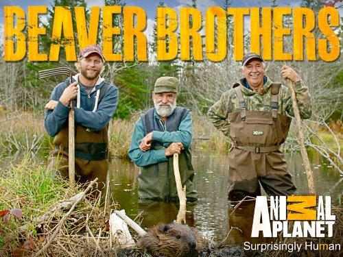 Beaver Brothers Season 1