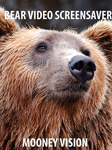 Bear Video Screensaver Set To Music