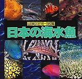 日本の海水魚 (山渓カラー名鑑)