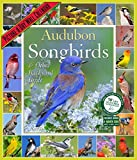 img - for Audubon Songbirds & Other Backyard Birds Picture-A-Day Wall Calendar 2016 book / textbook / text book