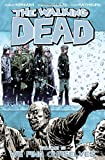 The Walking Dead Volume 15 TP: We Find Ourselves