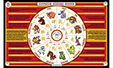 Tot Talk Chinese Zodiac Signs Placemat
