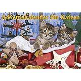 Adventskalender fÃ1/4r Katzen
