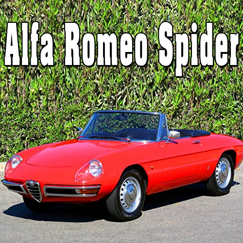 alfa-romeo-spider-internal-perspective-starts-idles-accelerates-slow-continuously