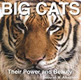 Big Cats: Their Power and Beauty