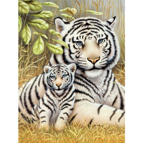 "Junior Small Paint By Number Kit 8-3/4""X11-3/4""-White Tiger Pair"