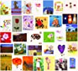 Super Value Pack of 30 Blank Greetings / Birthday Cards Suitable For All Occasions