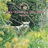 Here Comes The Grey Wolf (Animals of the Americas) (Spanish Edition)
