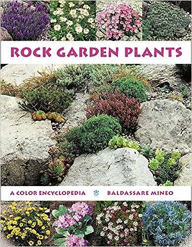 Pergola phoenix az rock garden books for Landscaping rocks for sale in pretoria