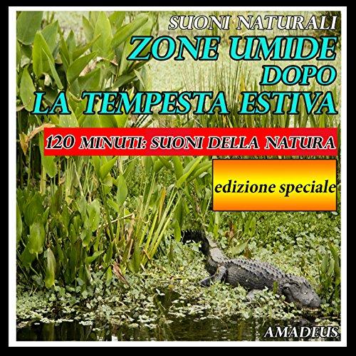 Zone umide dopo la tempesta estiva: suoni naturali (90 minuti: edizione speciale)