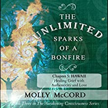 The Unlimited Sparks of a Bonfire, Chapter 5: Hawaii: Healing Grief with Authenticity and Love Audiobook by Molly McCord Narrated by Steve White