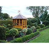 Riwo Gartenpavillon Pavillon - 161 Elegance geschlossen 8-Eck 3m