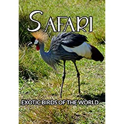 Safari Exotic Birds Of The World