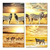 Hello Artwork Zebras Herd on Africa Safari at Sunset Scene Canvas Prints Wall Art Stretched and Framed Modern Decor Paintings Giclee Artwork for Living Room and Bedroom 4pcs/set (12''x12''x4pcs/set)