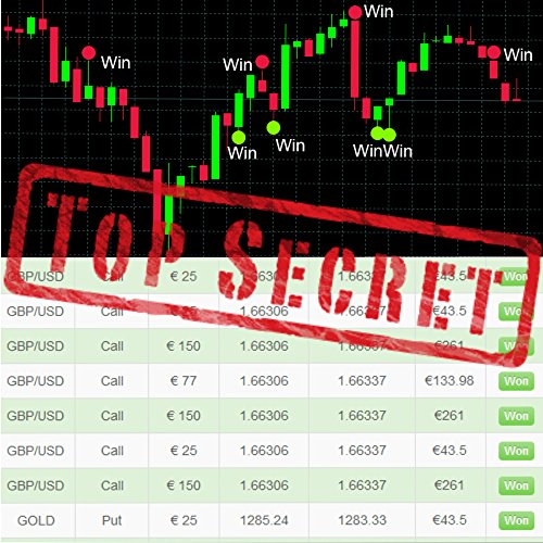 Secret to Profit with Binary Options without any Skills and Experience PDF