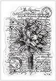 Joy! Crafts Clear Stamp, Bouquet