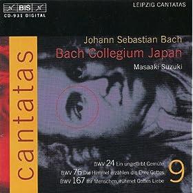 Die Himmel erzahlen die Ehre Gottes, BWV 76: Recitative: Gott segne noch die treue Schar (Bass)