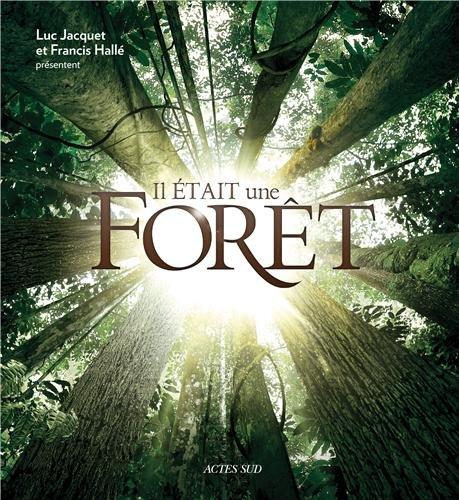 Il était une forêt en ligne