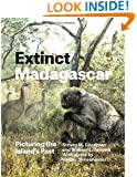 Extinct Madagascar: Picturing the Island's Past