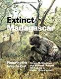 img - for Extinct Madagascar: Picturing the Island's Past book / textbook / text book