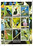 Animals of the world and birds mint stamp sheet featuring different birds from around world, one of the most popular collectors topics - Guinea / 1998 / 9 stamps