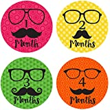Baby Monthly Stickers - Hipster Glasses - Baby Boy Milestone Stickers - 1-12 Months Onesie - Pinkie Penguin
