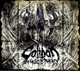 Say Hello To Tragedy (Limited Edition Digipack) By Caliban (2009-08-24)