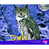 Owls (Nocturnal Animals)